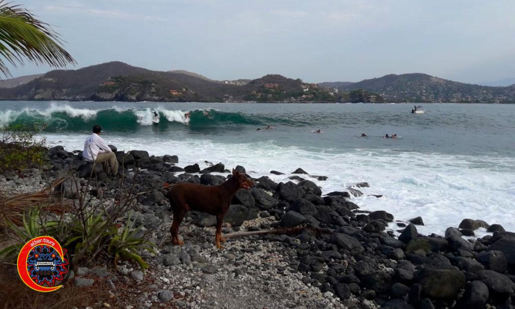 Las Gatas - Olas de arrecife